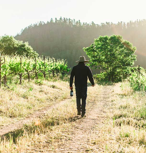 Doneland Obsidian Syrah: Walking in the Obsidian Vineyard. ©Donelan Wines